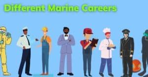 A List of Unique and Interesting Marine Careers