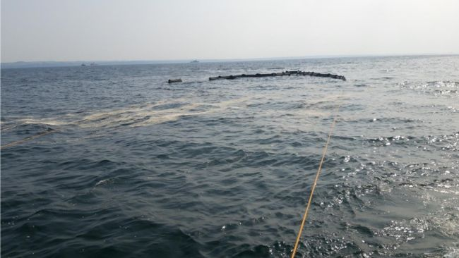 """From the Baltic oil spill response drill. Notice the white popcorn on the surface – the """"oil"""""""