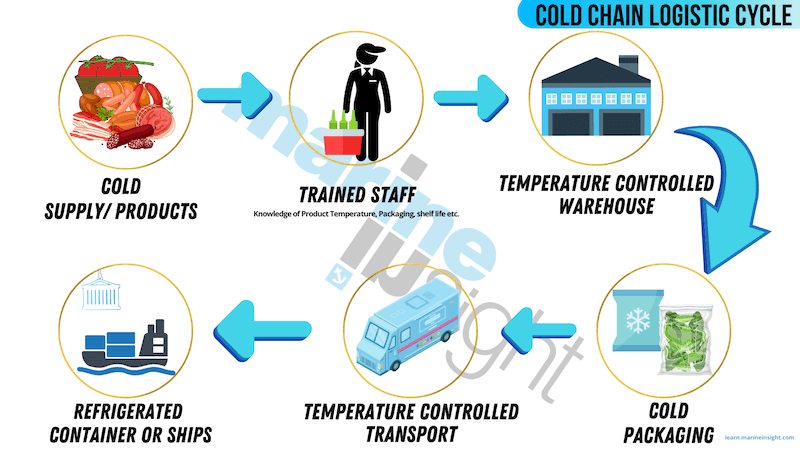 cold chain logistic Cycle