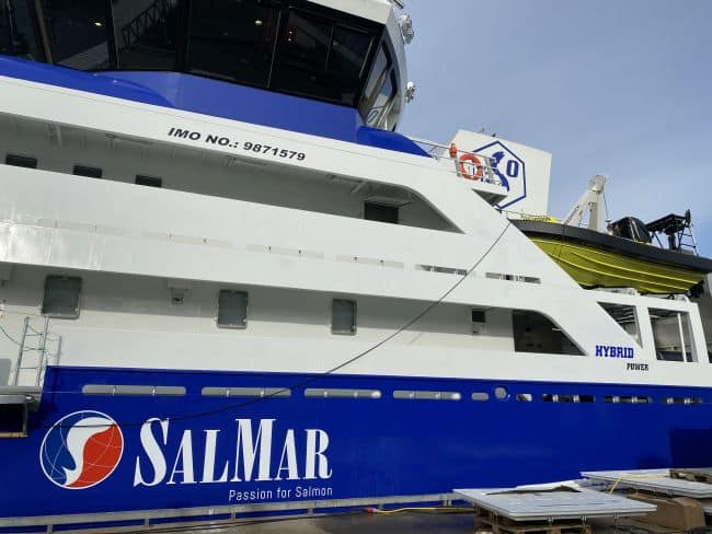 The Ro Vision hybrid live fish carrier - salmar