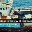 illegal fishing - documentary - seaspiracy -