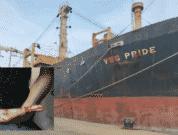 MV-VSG-Pride