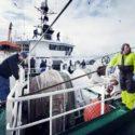 Danish seafarers onboard a ship