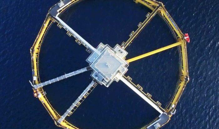 New marine aquaculture forecast