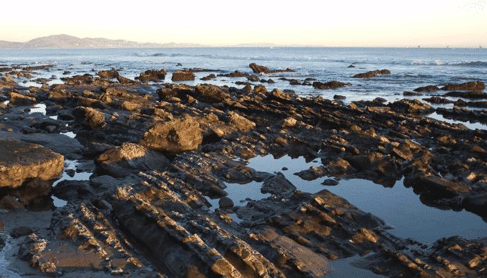 tide pools explained