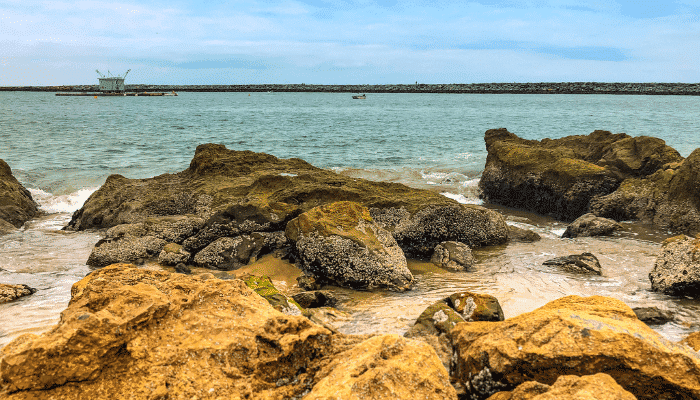 types of tide pools