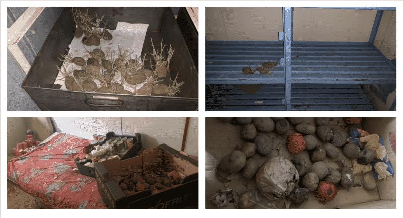 MV-ALI-BEY-Composite-food-image
