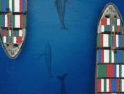 Panama Canal - Shipping - Marine life